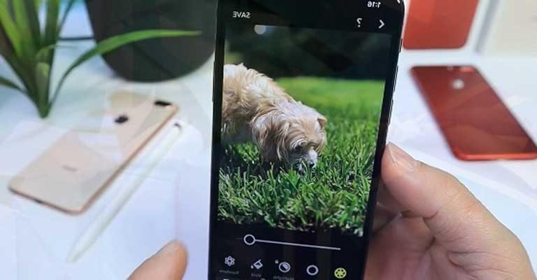 Chụp xóa phông Chụp xóa phông - Chụp xóa phông trên iPhone Xs Max có thể chỉnh sửa độ mờ chân dung