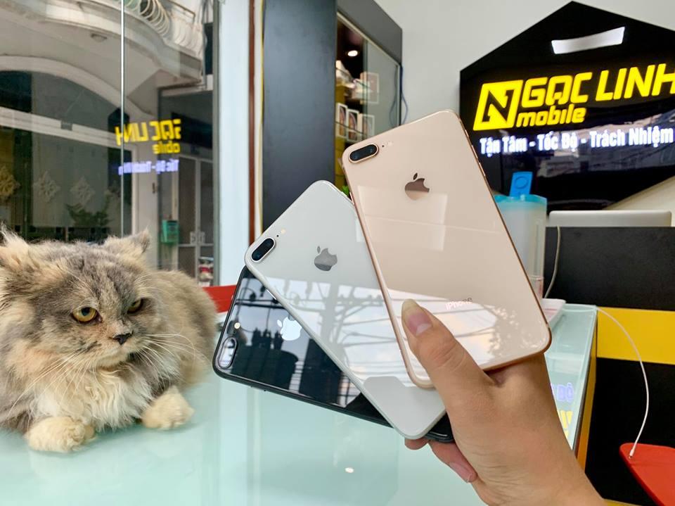 iPhone iphone - Vì sao mỗi năm Apple chỉ cho ra đời 1 thế hệ iPhone mới?